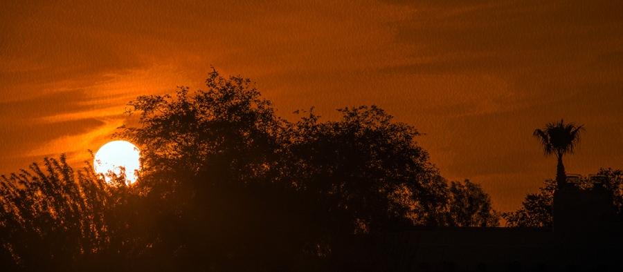 Sunset (1 of 1)-72