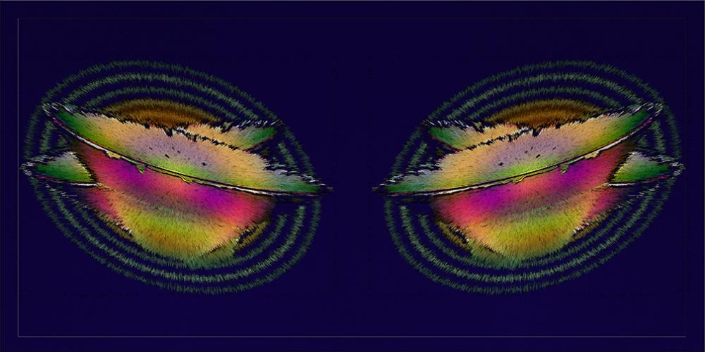 Vessel Collage blog