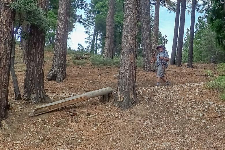 Box Camp Hike-15-72.jpg
