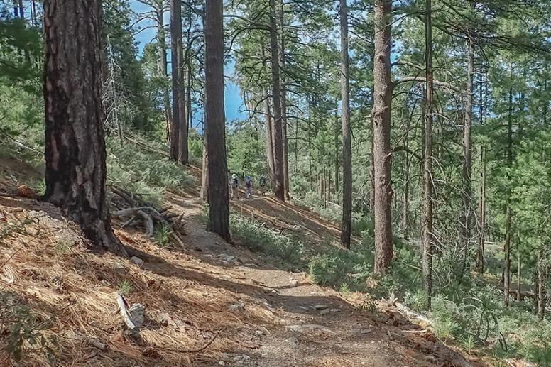 Box Camp Hike-7-72.jpg
