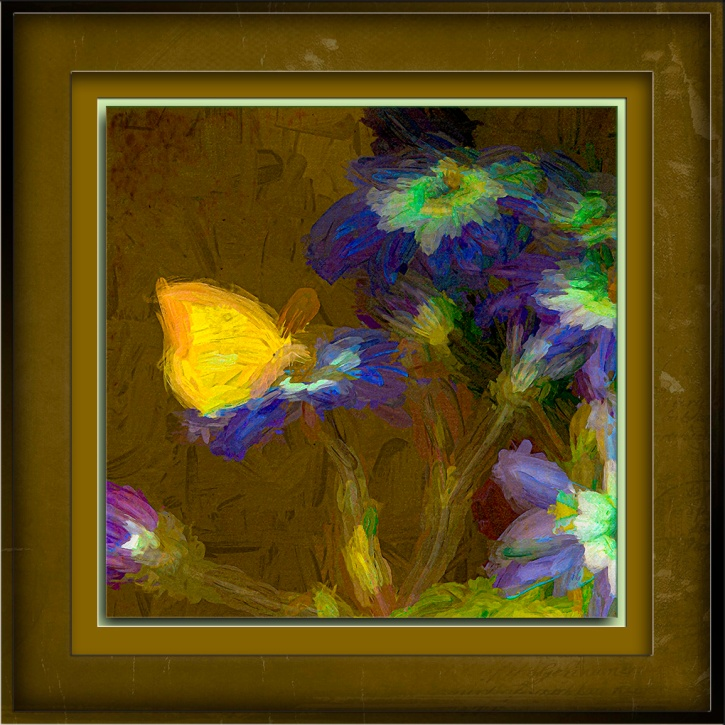 Butterfly on Pation Flowers-5725-Edit-1-art-72.jpg