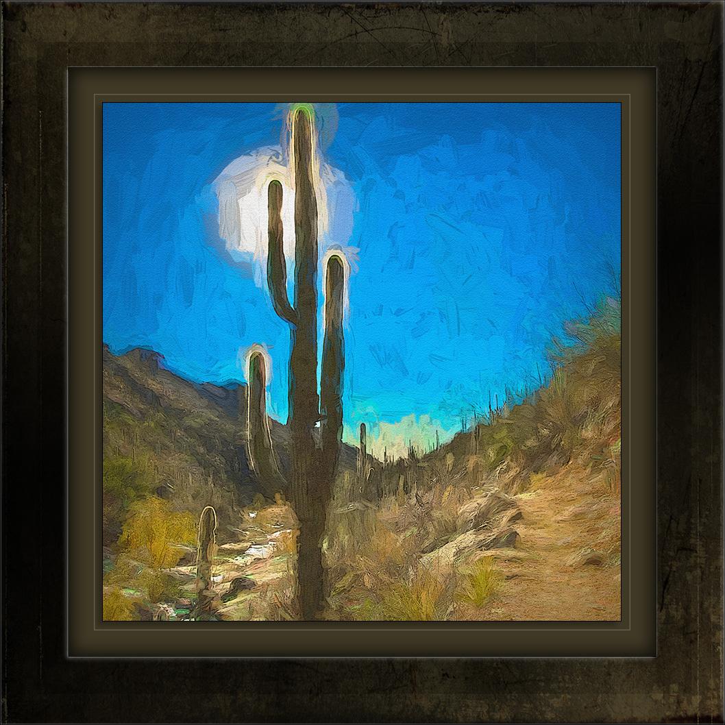 Seven Falls Trail Saguaro Sun-art-72.jpg