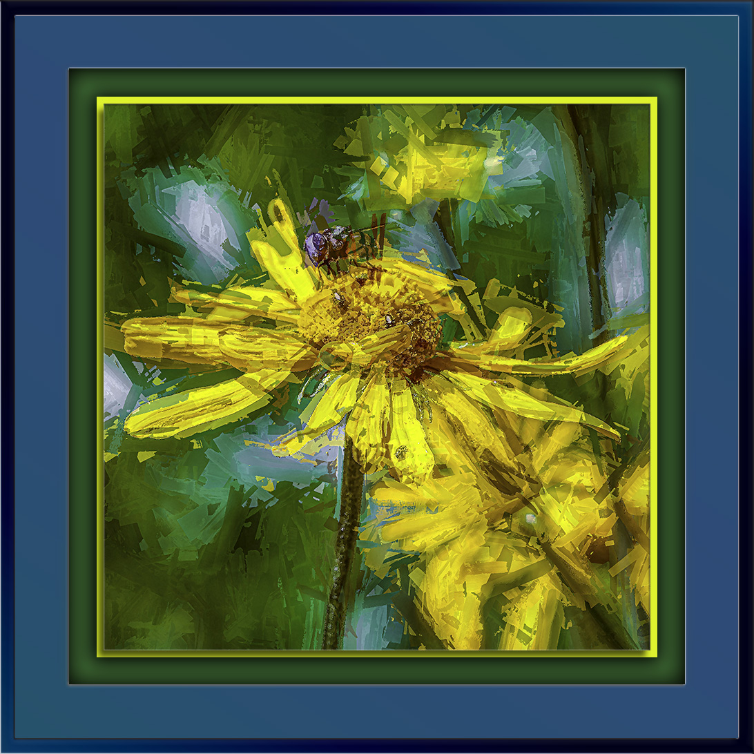 Western Sneezeweed(1 of 1)-2-Edit-1-art-72