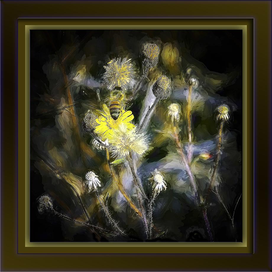 Bee on Camphorweed (1 of 1)-Edit-1-art-72.jpg