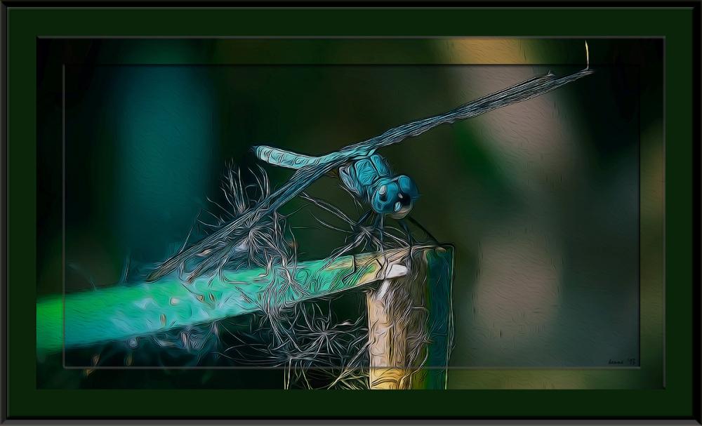 Sweetwater 09-21-13-8009 art blog framed