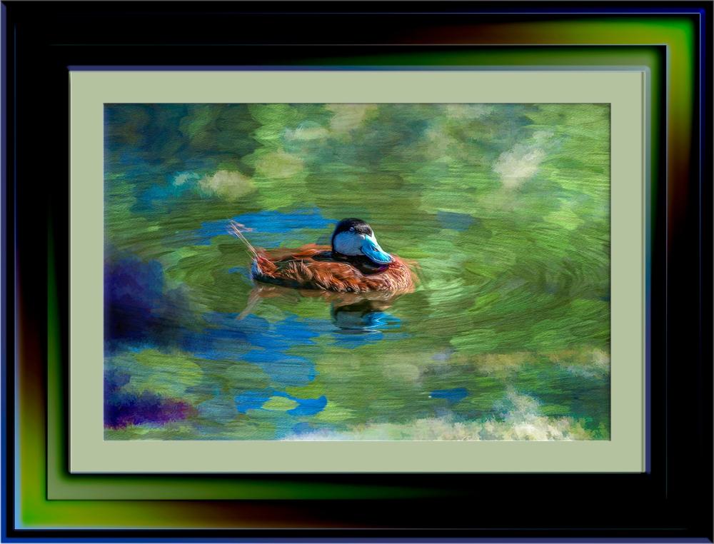 Sweetwater 09-21-13-8039-Edit-1-Duck-Art-2-72