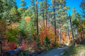 Aspen Trail-16-72