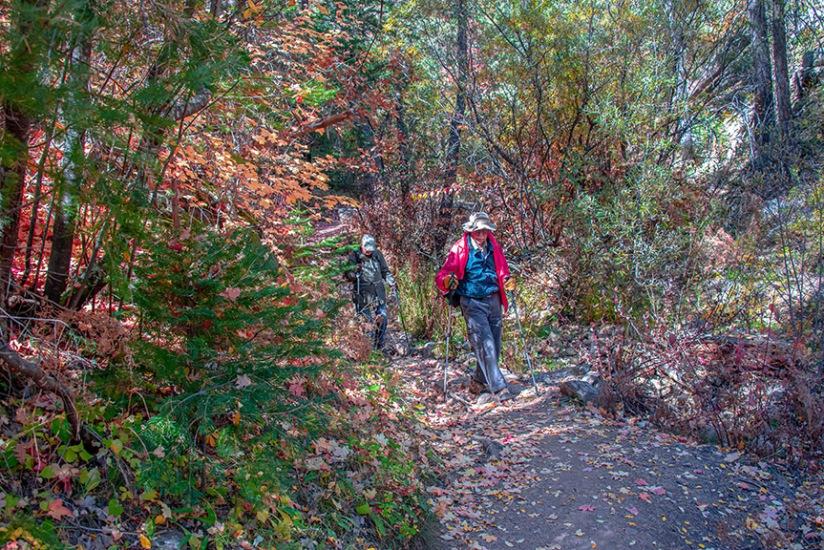 Aspen Trail-21-72