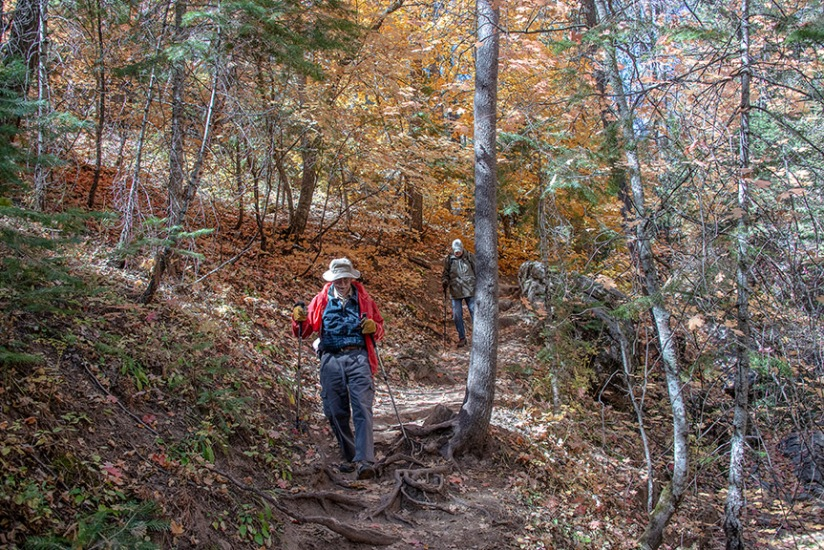 Aspen Trail-23-72