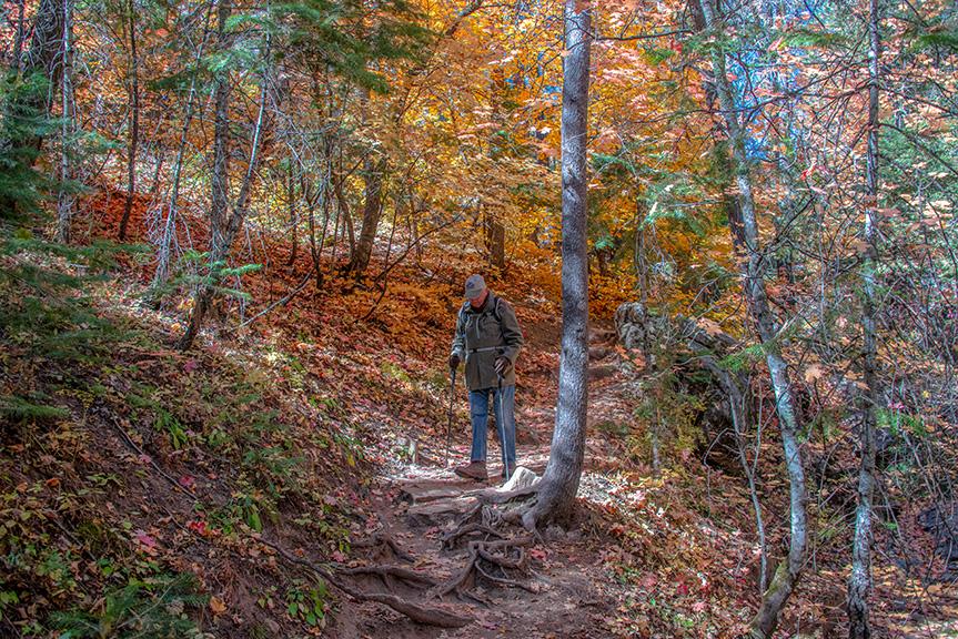 Aspen Trail-24-72