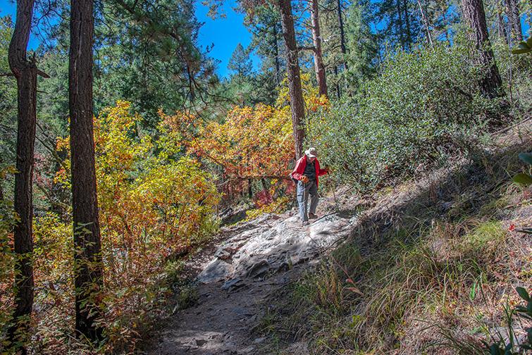 Aspen Trail-25-72