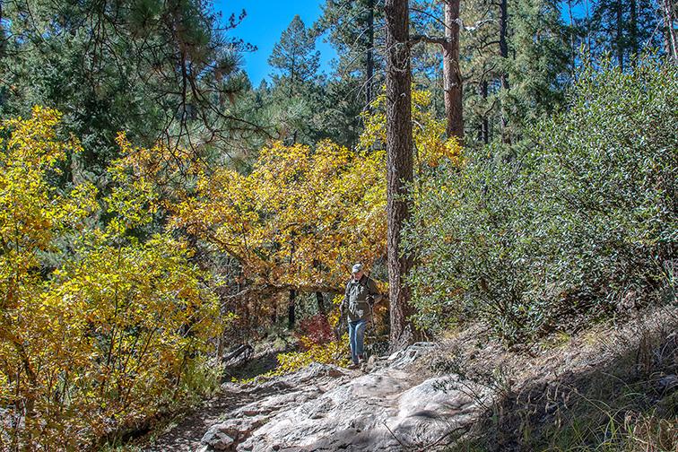 Aspen Trail-26-72