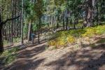 Aspen Trail-9-72