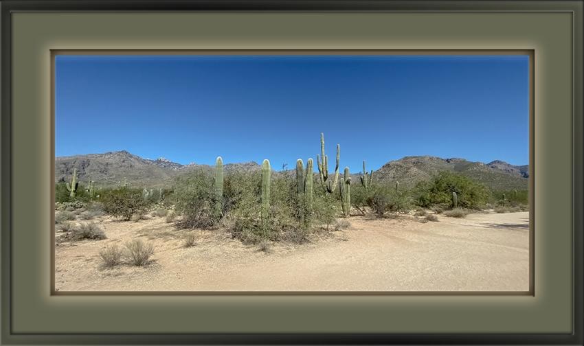Bear Canyon Trail-72.jpg