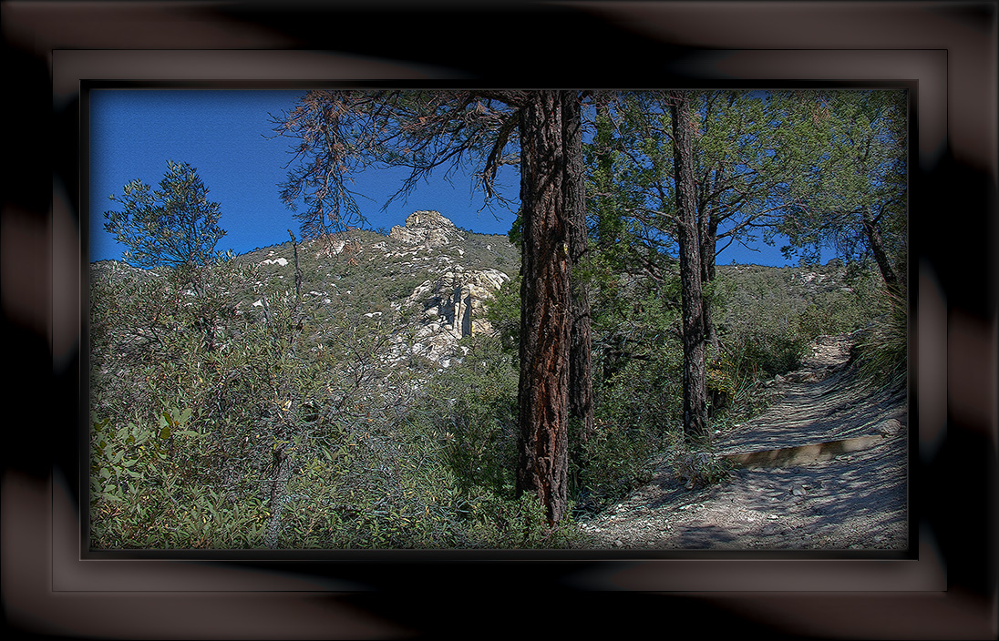 Green Mountain Trail 9-art-72-II.jpg