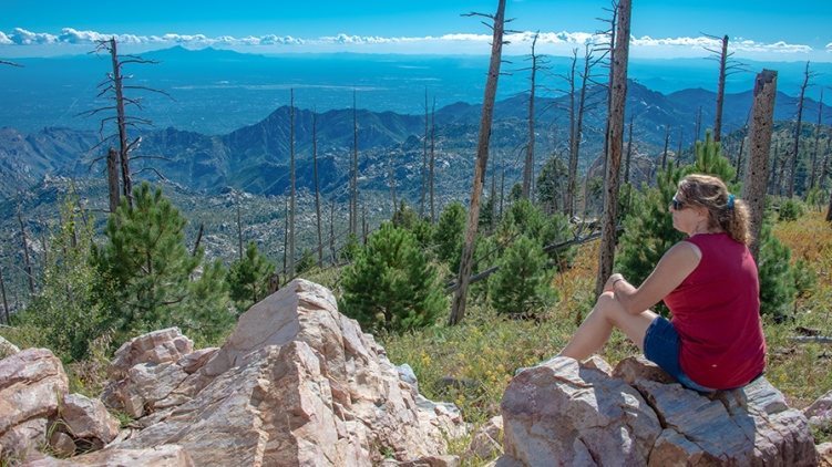 Mary On Mt. Lemmon-72