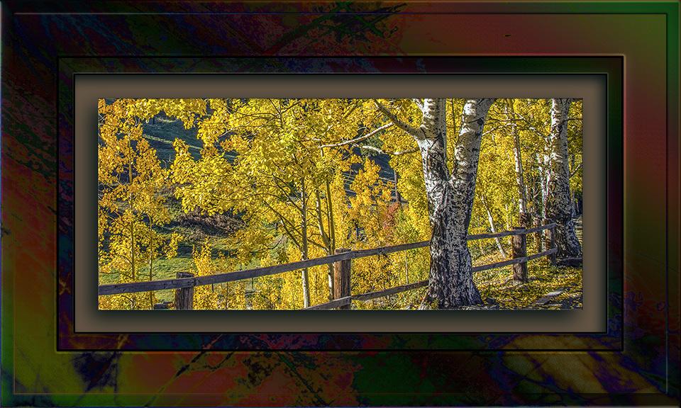 Aspen Draw Fall Colors 2013-8364 blog II