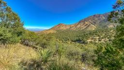 Madera Canyon-10-72