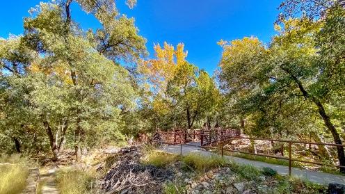 Madera Canyon-12-72