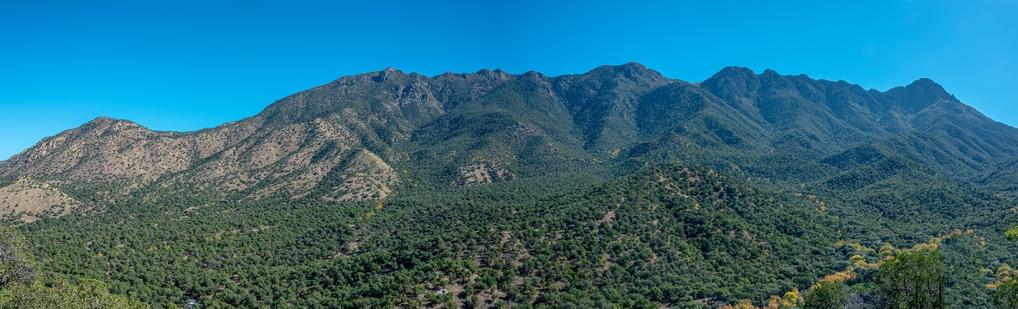 Madera Canyon-6-72