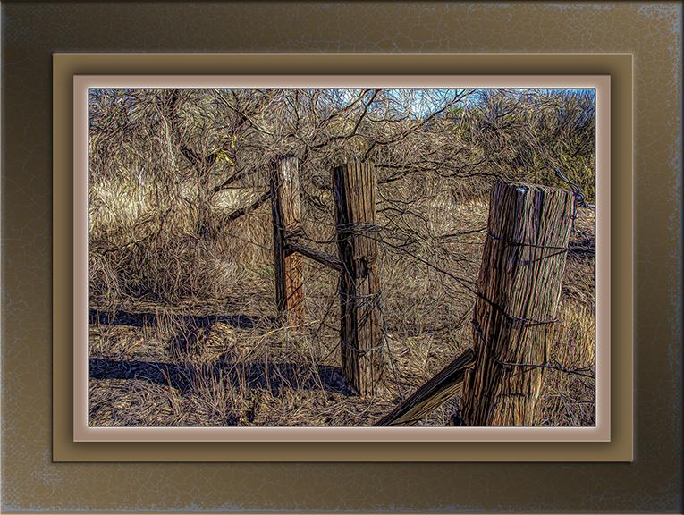 Desert Fenceline-art-72-2