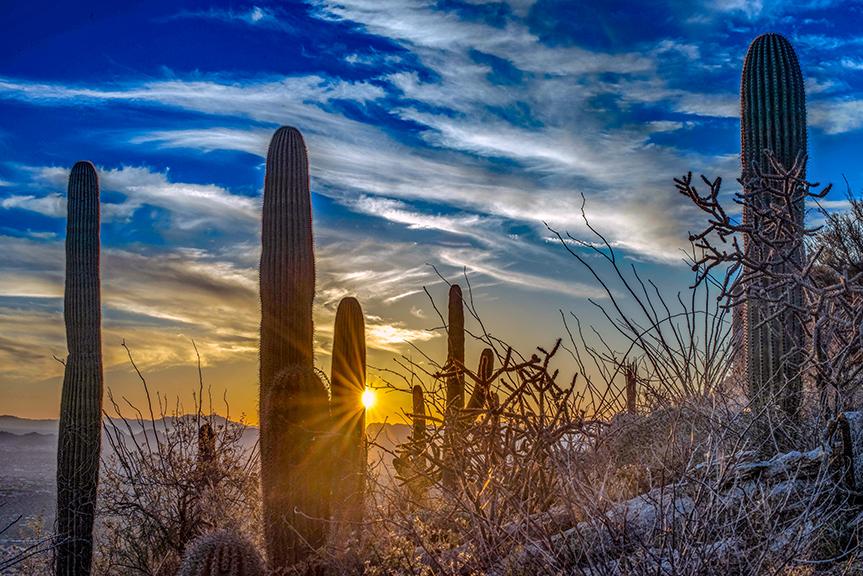 Tucson sunset (1 of 1)-4-72-2