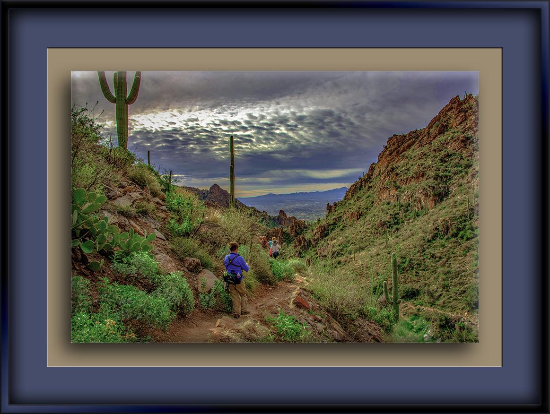 Ventana Canyon (1 of 1)-2-Edit-1-72