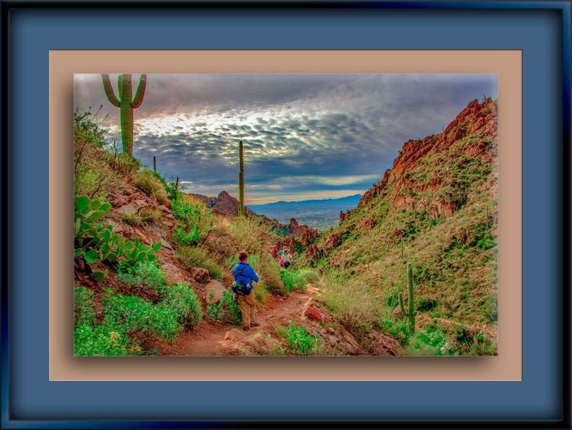 Ventana Canyon (1 of 1)-2-Edit-1-72