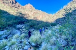 Ventana Canyon-3-72