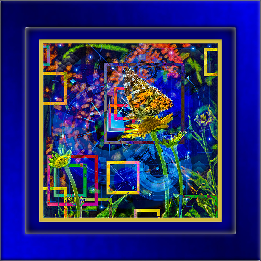 Painted Lady-3219-KT-2 mixed art-72