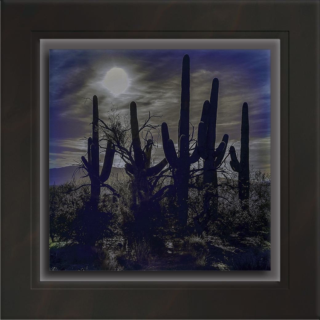 Saguaro Family-2-Edit-art-72