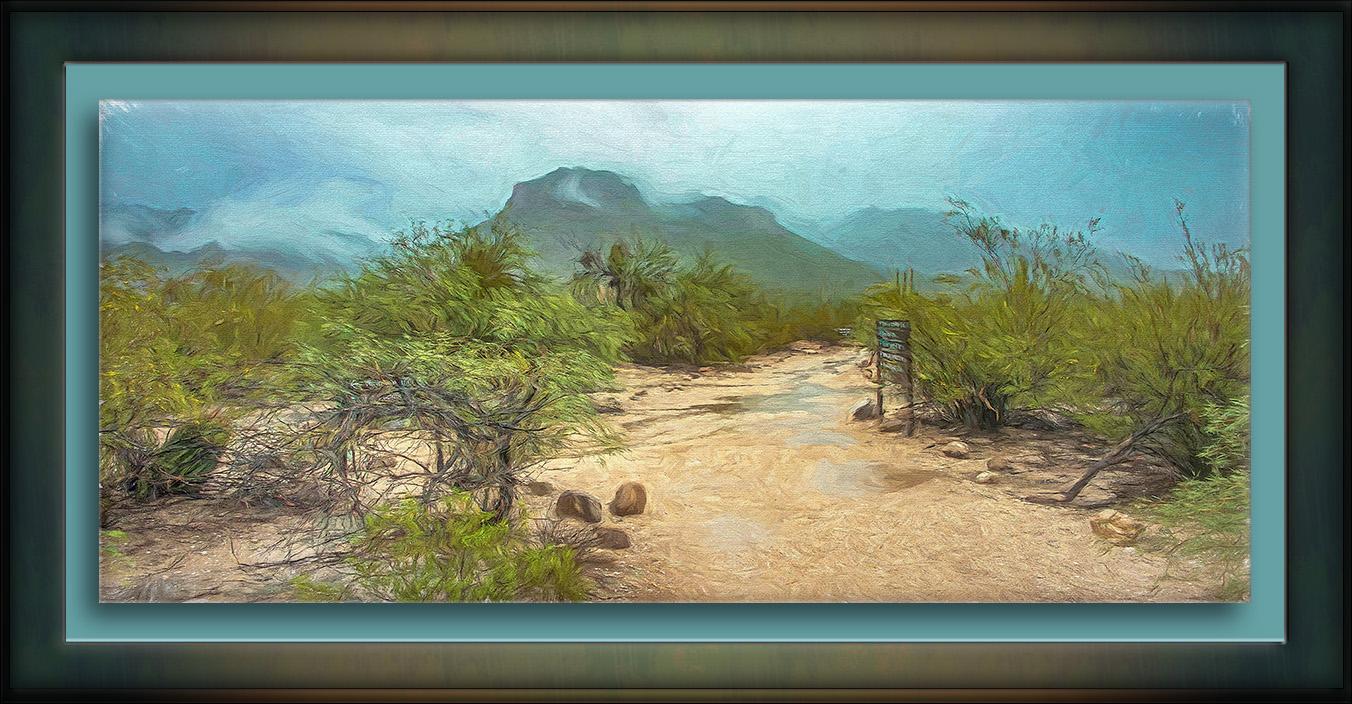 Sabino Canyon (1 of 1)-painting-72