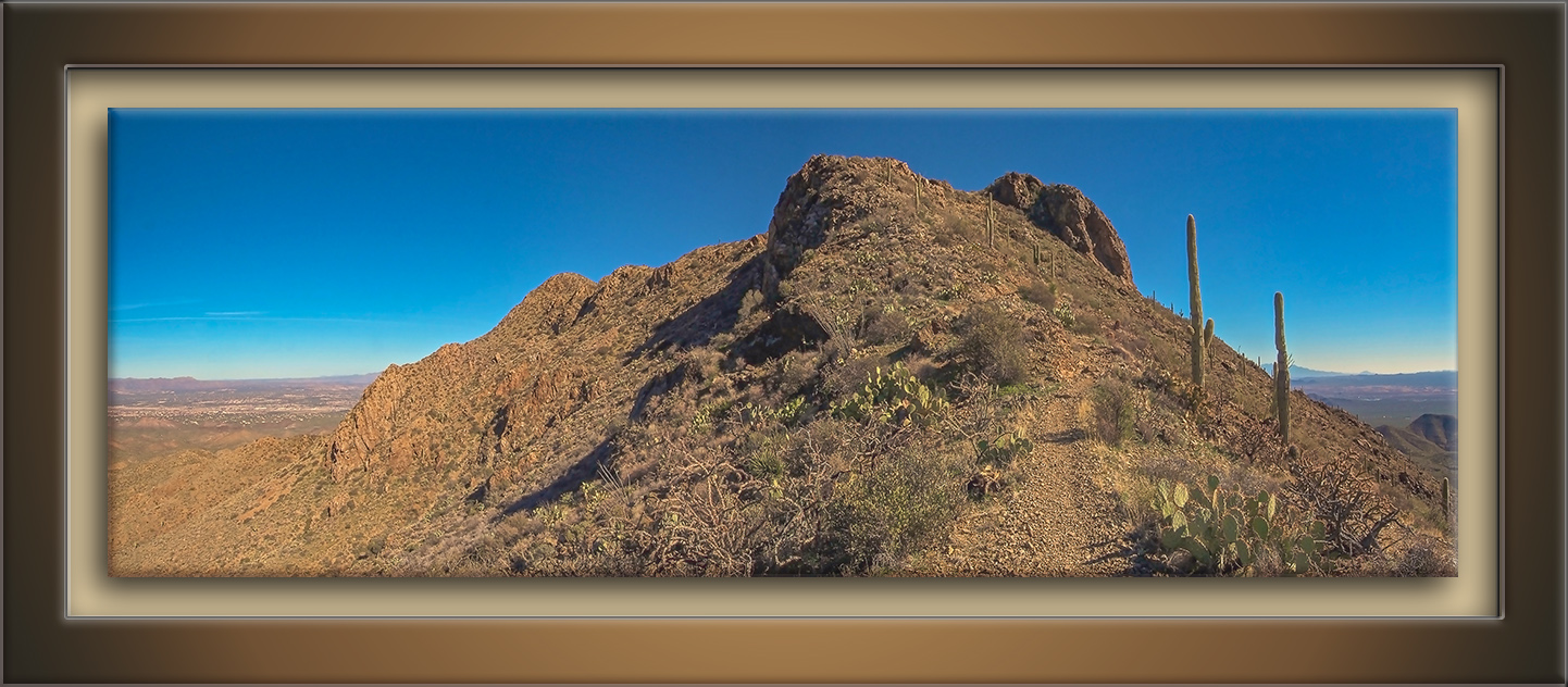 Wasson Peak 01-30-12