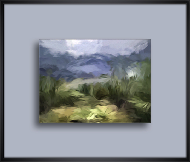Canyon View-art-72