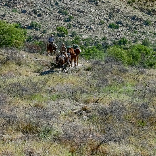 Arizona Trail on Horseback-2-72