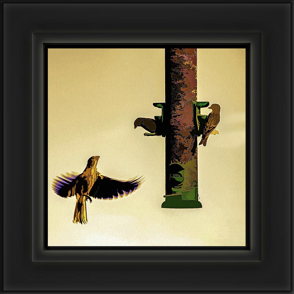 Birdfeeder-art-72