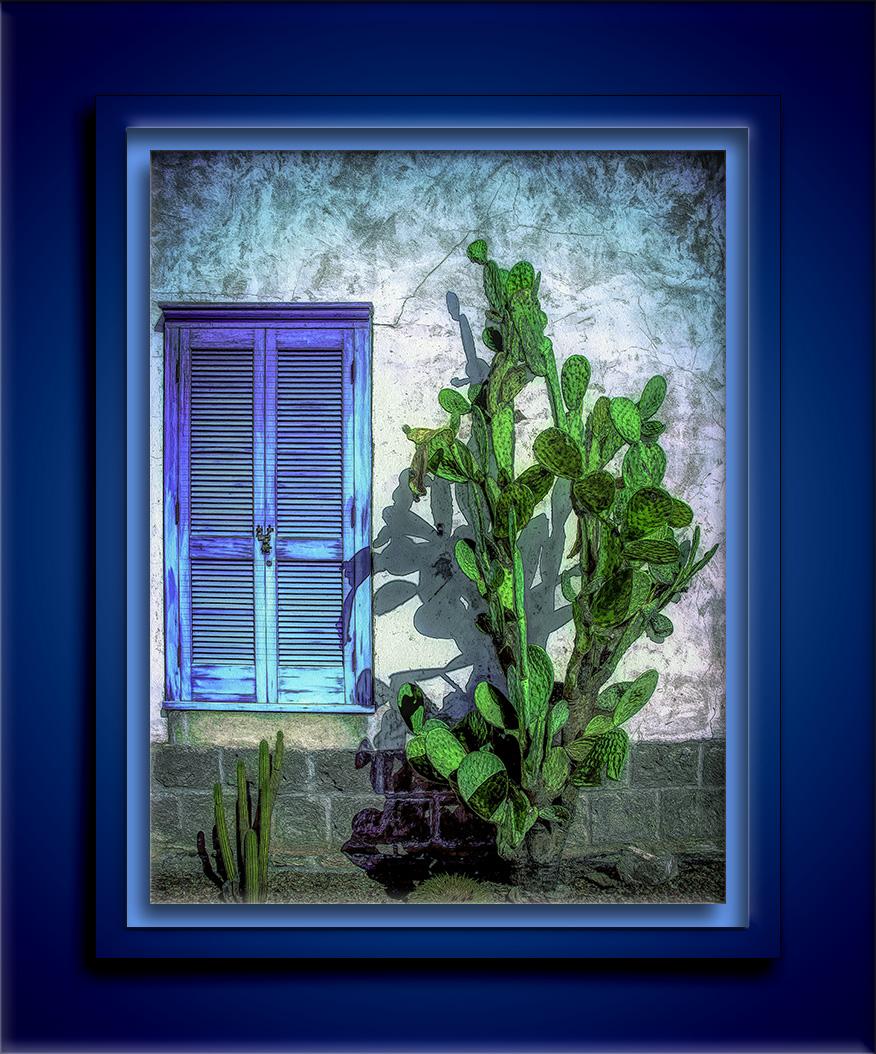 Cactus & Shutter (1 of 1)-2-art-Edit-1-72