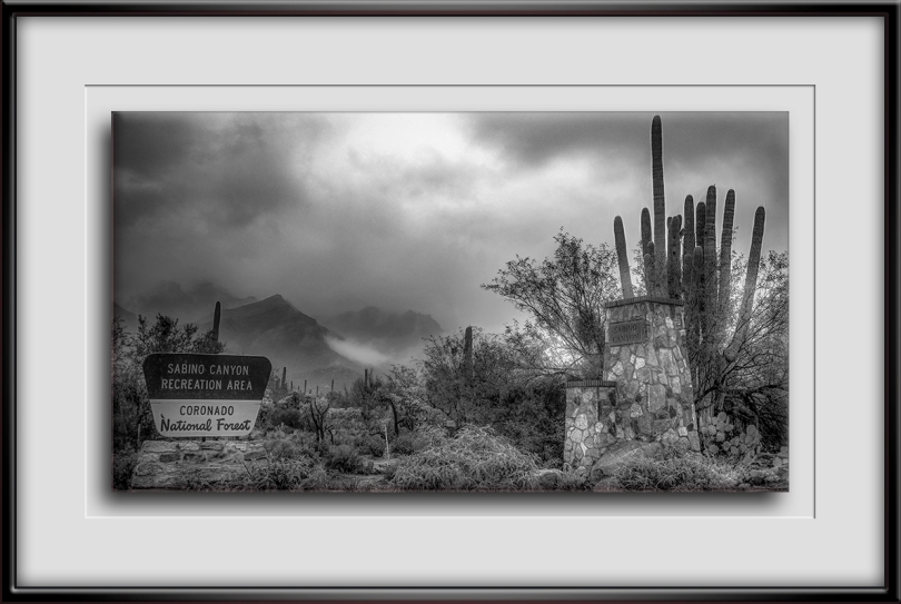Sabino Canyon (1 of 1)-20-Edit-1-B&W-72