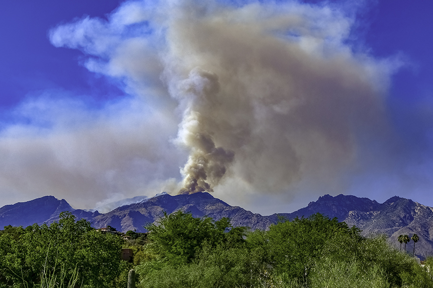 Bighorn Fire in Pima Canyon-1-72