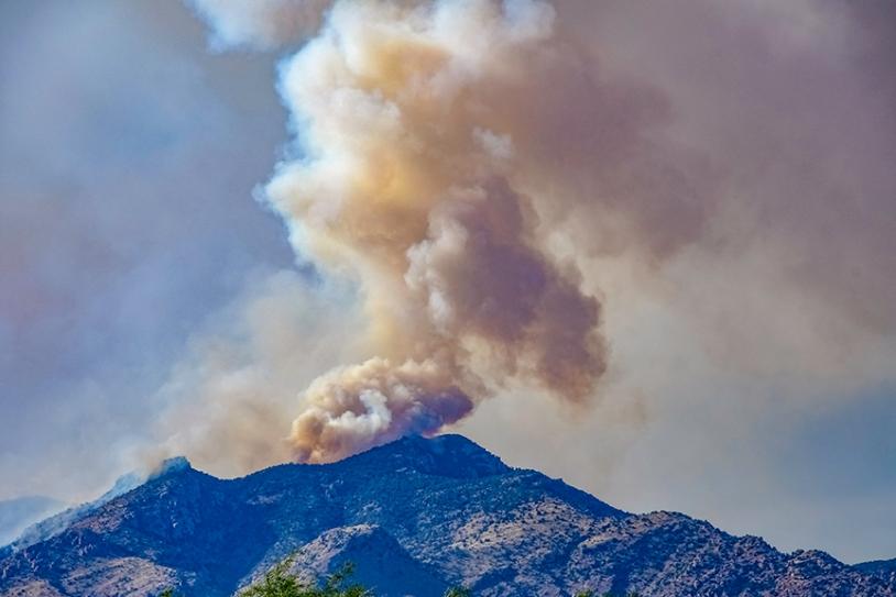 Bighorn Fire Pima Canyon-2-72