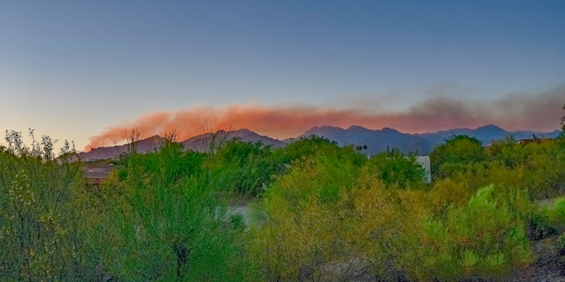Bighorn WIldfire from Patio-72