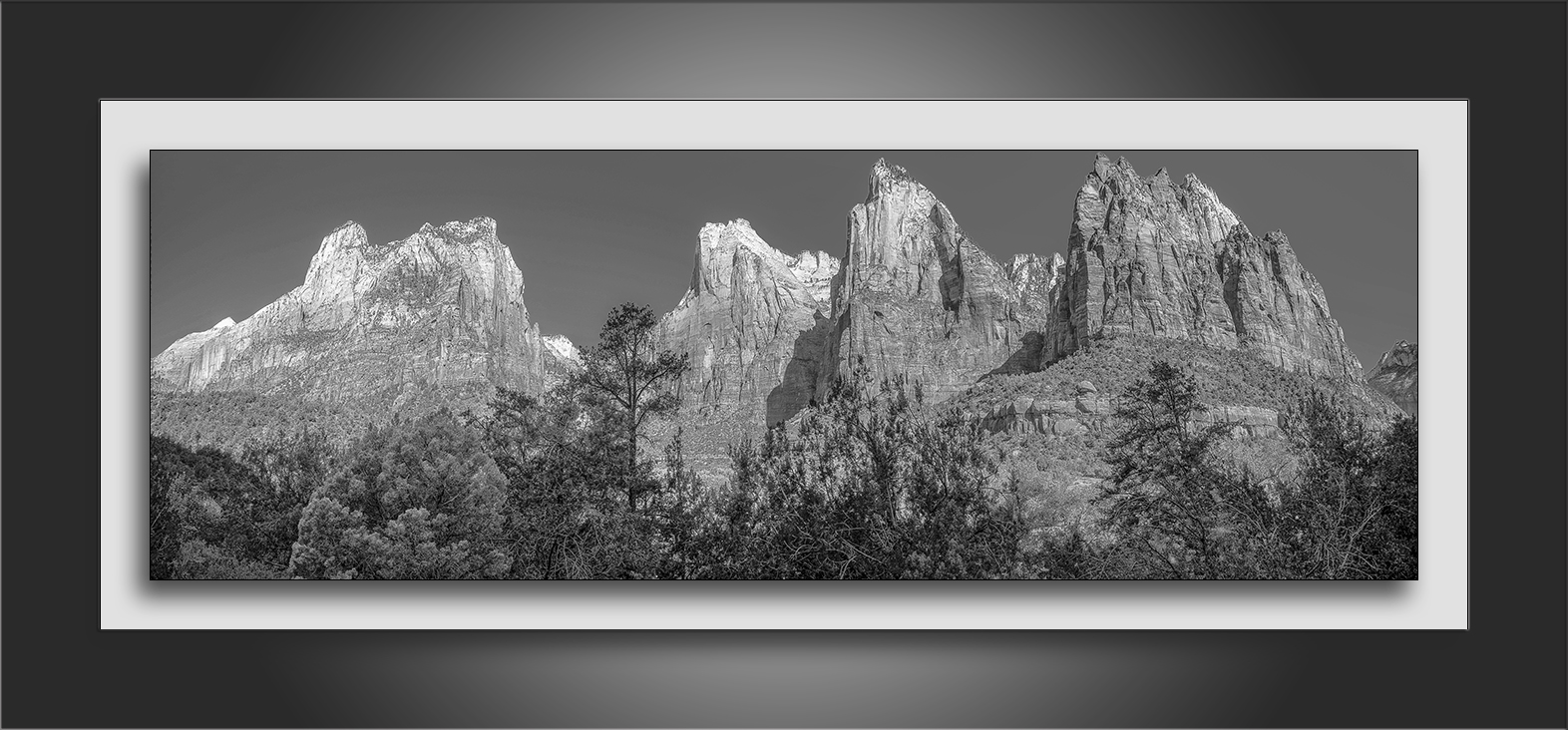 Canyon Views Panorama (1 of 1)-B&W-72