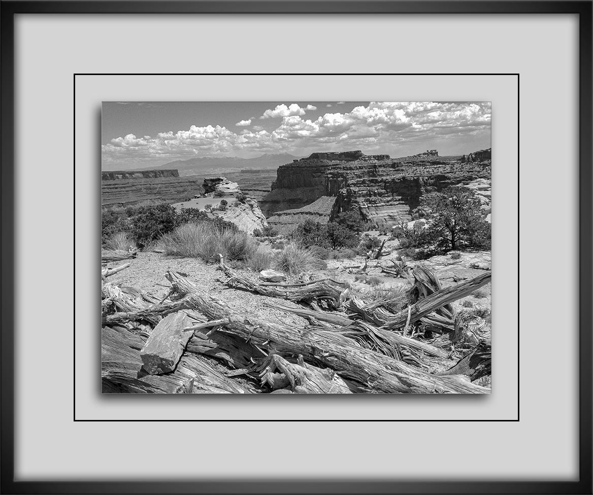 Canyonland-72
