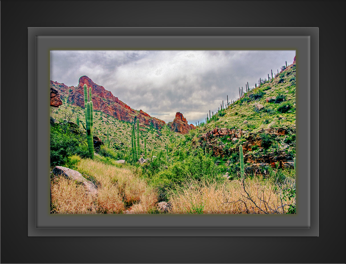 Ventana Canyon (1 of 1)_Art-72