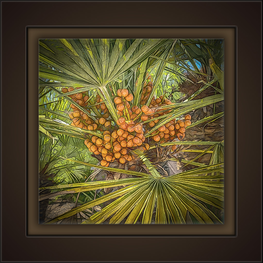 Palm Berries-Art-72