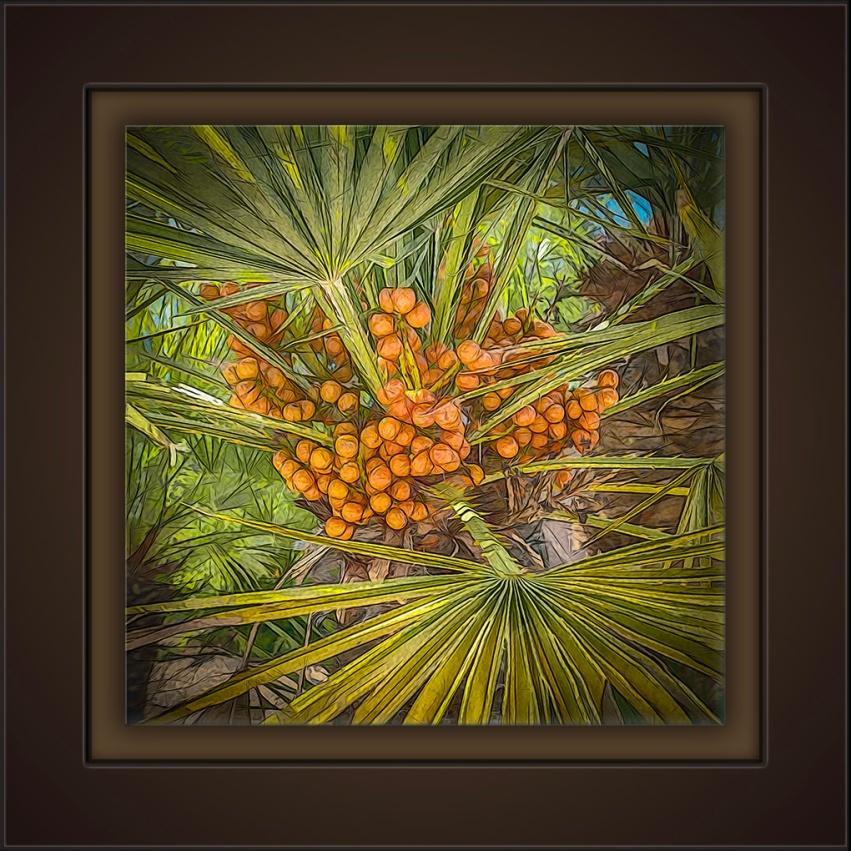 Palm Berries-Art-72