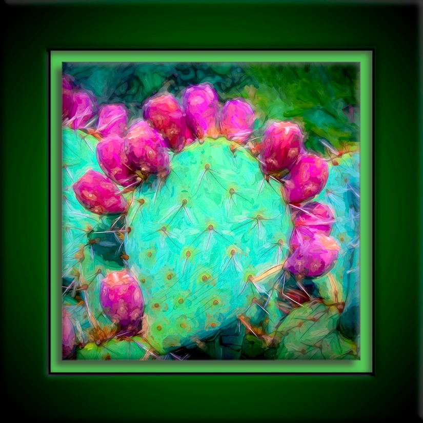 Prickly Pear Art
