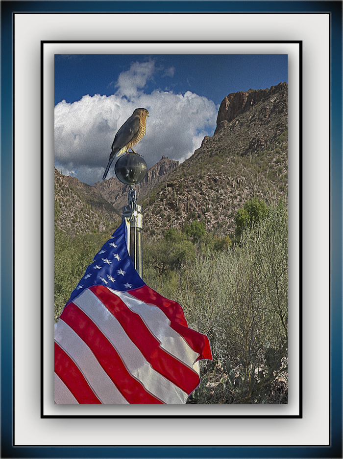sabino-canyon-clouds_coopers-hawk-blog