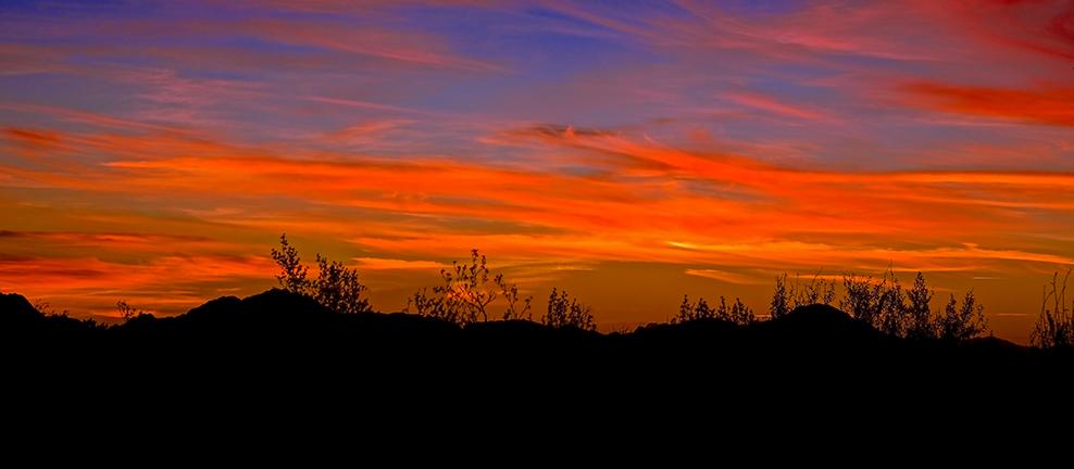 Bougainvillea & Sunsets December 2012